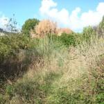 plougonvelin trez hir, proche plages terrain constructible a vendre 480 m2